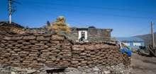 قرية في أذربيحان منازلها من فضلات الحيوانات