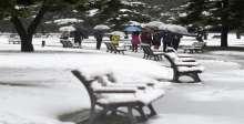 الثلوج تشل اليابان