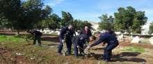 الشرطة تشارك في تشجير المقابر بطوباس