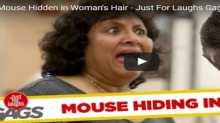 رد فعل نساء عثرن على فأر في ملابسهن