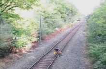 عامل سكة حديد ينقذ منتحر من أمام القطار