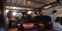 بالفيديو والصور .. عائلة من غزة تعيش برفقة القوارض والثعابين