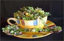 أكواب الشاي لإضفاء لمسة رائعة في ديكور المنزل