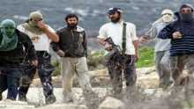 Settlers hold provocative visit to a West Bank park under army protection