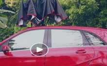 بالفيديو.. شمسية لحماية السيارة من الشمس