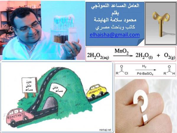 العامل المساعد النموذجي.. بقلم محمود سلامة الهايشة