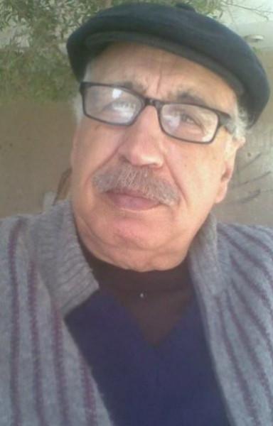 القضية الفلسطينية بين الحلول الاقتصادية وهدف التحرر الوطني بقلم:محمد جبر الريفي