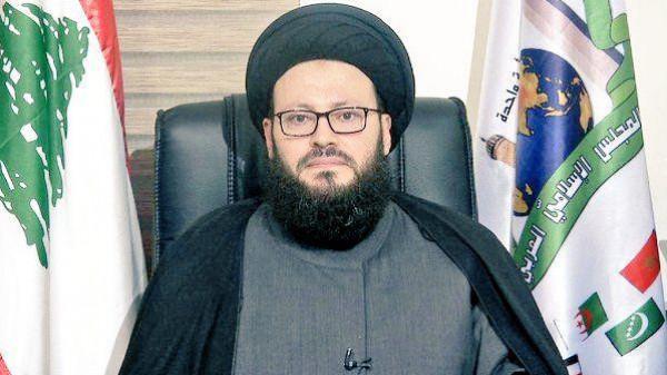 الأمن القومي الإسلامي بقلم:السيد محمد علي الحسيني