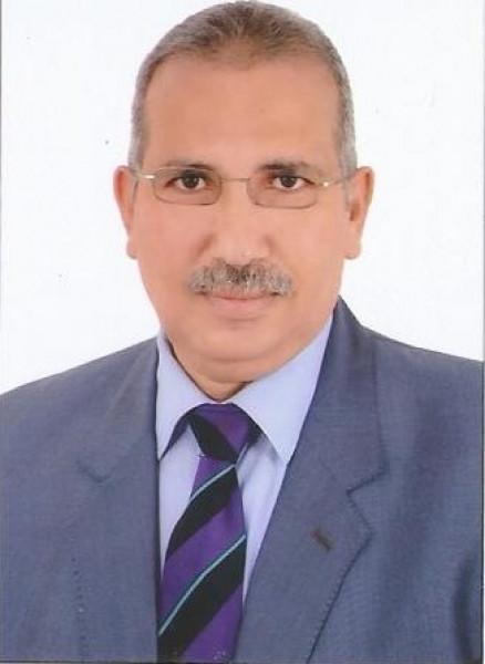 دور المجتمع المدني في الحياة الديمقراطية        بقلم د. عادل عامر