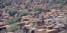 إنها القرية ياعزيزي بقلم: سامح عسكر